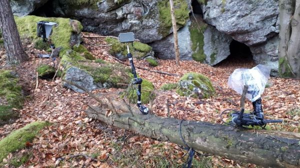 Cameratrap setup for lynx photography in the bavarian forest