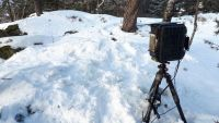 Cameratraps during Wintertime